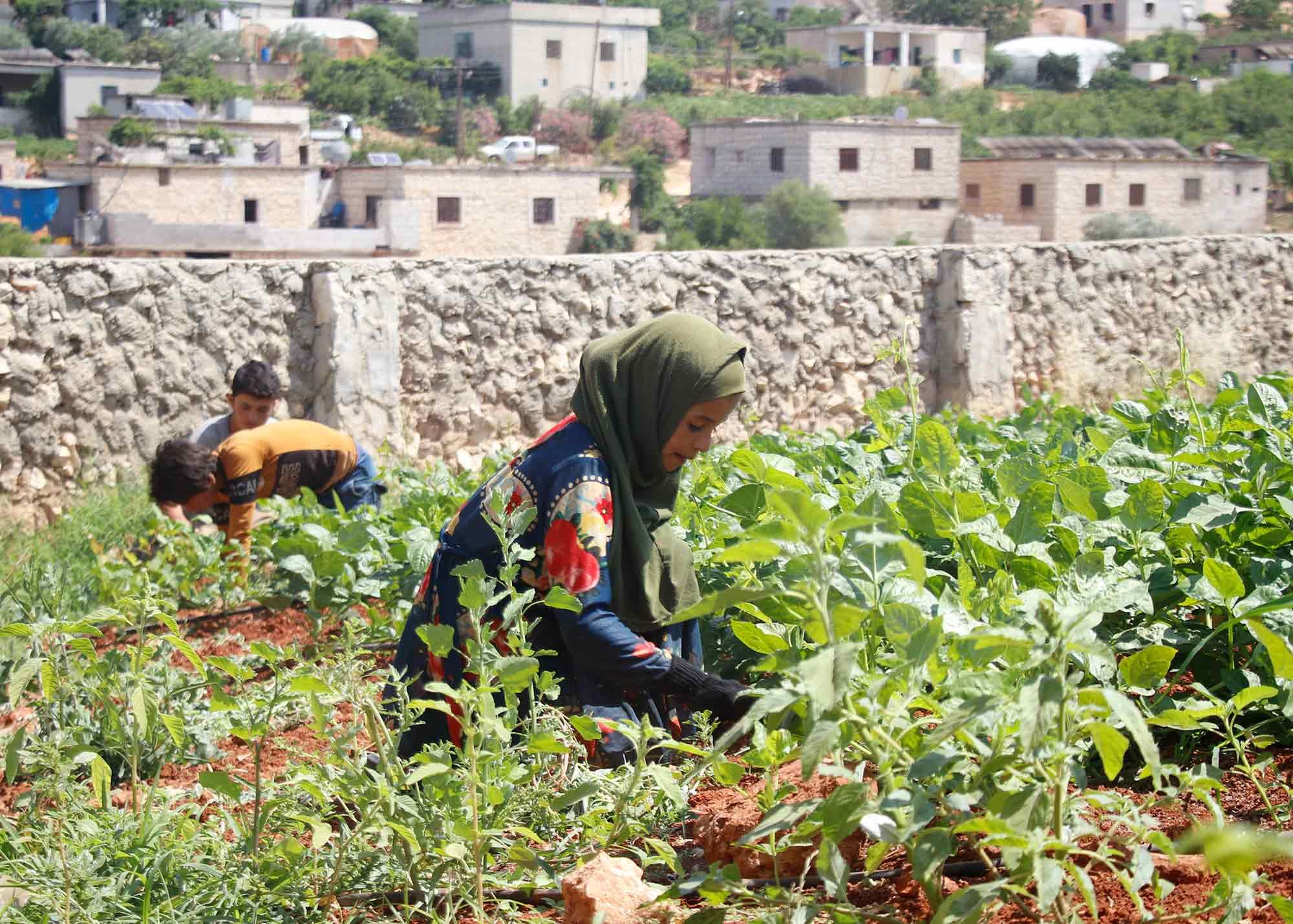 اليوم العالمي لمكافحة عمل الأطفال